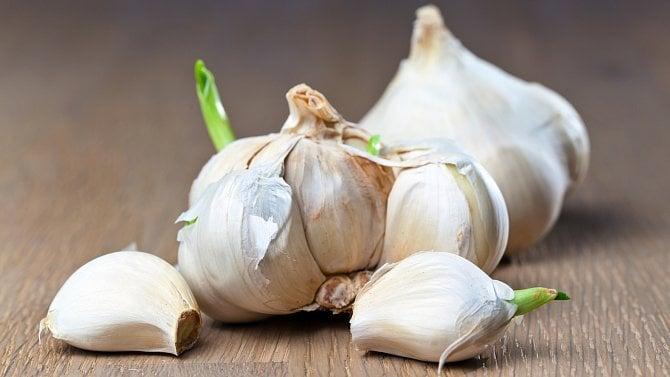 Vklíčku česneku je to nejlepší, dávat pryč jeho střed je škoda