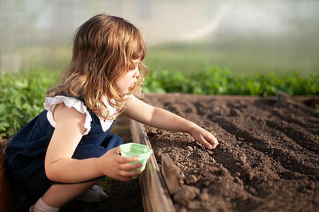 Každý prcek může být zahradníkem, když společně najdete, co ho baví