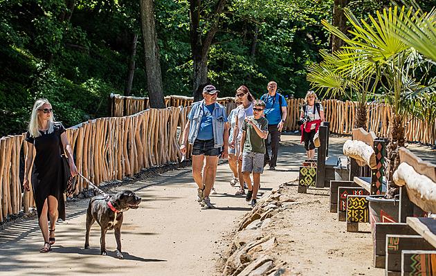 Hrochům jsou návštěvníci safari parku blíž díky nové cestě za 23 milionů