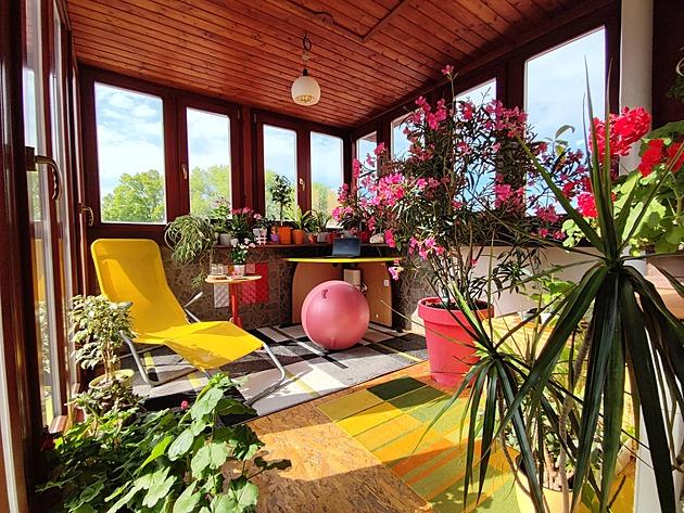 Ze zimní zahrady s oleandrem od popelnic vytvořila home office i pěstírnu
