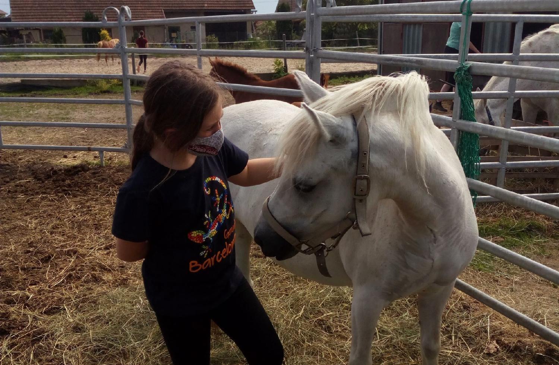Terapie vsedle. Jízda na koni může dětem pomoct isúzkostmi po pandemii